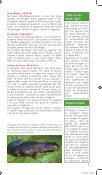 Parco Naturale Regionale del Beigua - Page 7