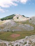 Ambiente Montano - CILENTO IN RETE - Page 5