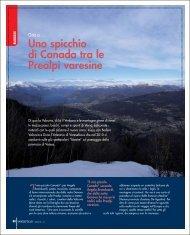 Uno spicchio di Canada tra le Prealpi varesine - Unione degli ...