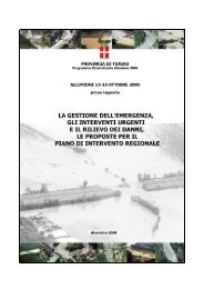 Untitled - Provincia di Torino