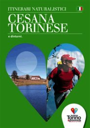 Itinerari naturalistici Cesana Torinese - Turismo Torino