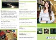 Bachelor Flyer ansehen - Module23 Werbeagentur