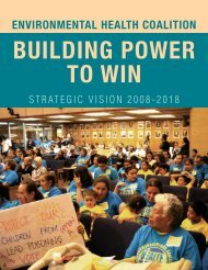 Strategic Vision 2008-2018 - Marguerite Casey Foundation