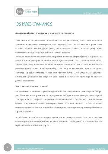 IX e X NERVOS CRANIANOS - Instituto Paulo Brito