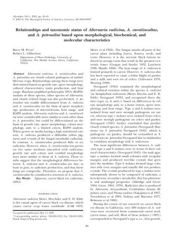 Relationships and taxonomic status of Alternaria ... - Mycologia
