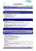 WIGO Premium Felgenreiniger - Seite 3