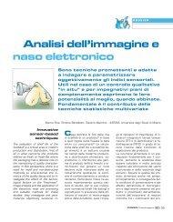 Analisi dell'immagine e naso elettronico - Immaginiecomputer.it