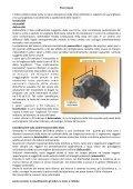 le classificazioni, gli indici, la testa, e l'olfaËo - TrovaVetrine.it - Page 5