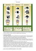 le classificazioni, gli indici, la testa, e l'olfaËo - TrovaVetrine.it - Page 6