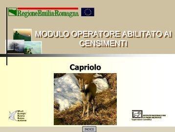 MODULO CENSITORE capriolo - St.E.R.N.A