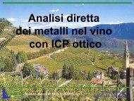 Analisi diretta dei metalli nel vino con ICP ottico-Silpa Jesi