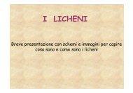 I LICHENI - Provincia di Torino