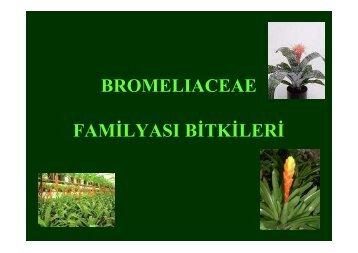 Sus-bitkileri-3.ders - BahceBitkileri.org
