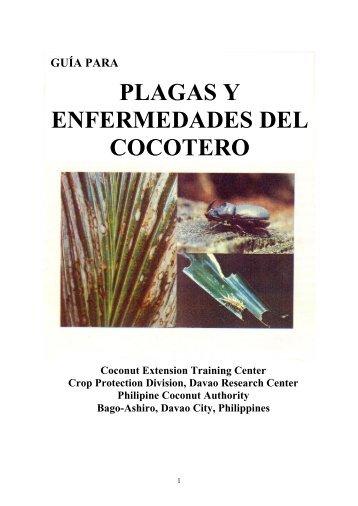 Enfermedades - Comité Nacional Sistema-Producto Palma de Coco ...