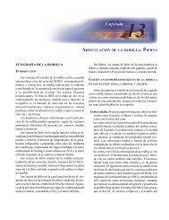 ARTICULACIÓN DE LA RODILLA. PIERNA