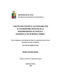 mario rivera meza - Tesis Electrónicas Universidad de Chile