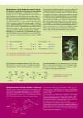 chiraleformer - Page 7
