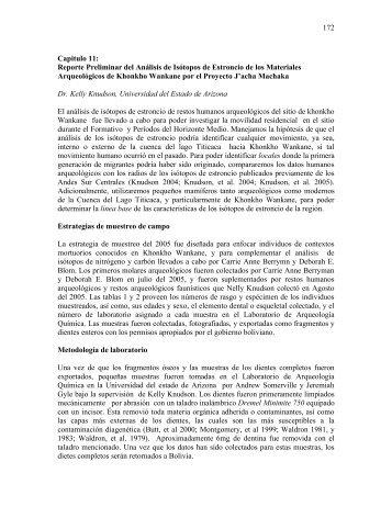 Reporte Preliminar del Análisis de Isótopos de Estroncio de los ...