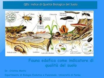 indice di Qualità Biologica del Suolo - Geol@b onlus
