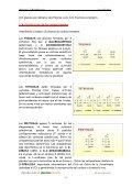 LOS GLÚCIDOS - IES Izpisúa Belmonte - Page 5