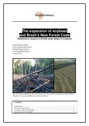 The expansion of soybean and Brazil's New Forest ... - Repórter Brasil
