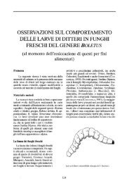 osservazioni sul comportamento delle larve di ditteri in funghi freschi ...