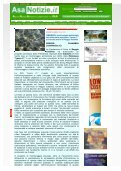 Laura C - Fare Verde Calabria - Page 2