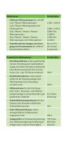 Heizen mit erneuerbaren Energien - Bundesamt für Wirtschaft und ... - Seite 3