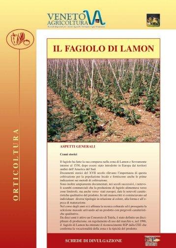 scarica scheda divulgativa fagiolo di Lamon pdf - Veneto Agricoltura