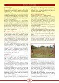 scarica scheda divulgativa fagiolo di Lamon pdf - Veneto Agricoltura - Page 4