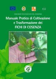 Manuale Pratico di Coltivazione e ... - Fichi di Cosenza