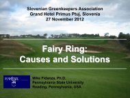 Fairy Ring: Causes and Solutions