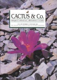 CACTUS & Co. - Free