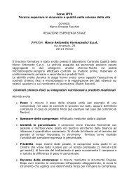 Facchini.pdf - Liceo Norberto Rosa