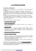 L'apparato riproduttore - Italiano per lo studio - Page 2