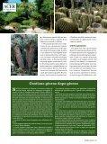 Passato e futuro - Il Verde Editoriale - Page 2