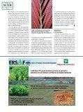 Passato e futuro - Il Verde Editoriale - Page 6