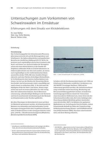 Untersuchungen zum Vorkommen von Schweinswalen im Emsästuar