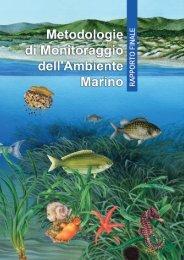 Rapporto finale - Metodologie di Monitoraggio dell ... - Momar