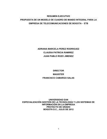 informe ejecutivo modelo propuesto