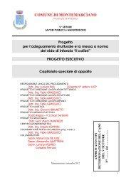 CAPITOLATO SPECIALE D'APPALTO - Comune di Montemarciano