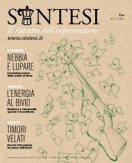 n. 1 / 2011 - SINTESI