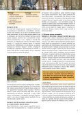 Preparazione razionale del cippato nell'ambito della raccolta ... - CH - Page 3