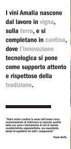 Scarica la brochure dei nostri vini in formato pdf - Amalia Cascina in ... - Page 2