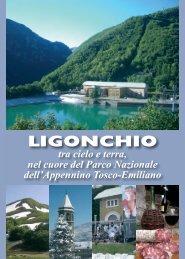 edizione 2011 - Comune di Ligonchio