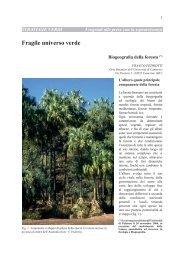 scarica pdf 3,7 MB - Museo Tridentino di Scienze Naturali
