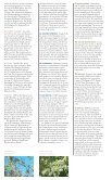 Manincor 10 - Page 6