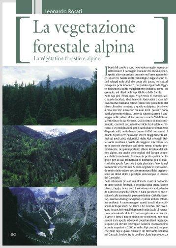 La vegetazione forestale alpina, di Leonardo Rosati