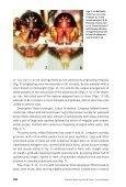 Mallinella thaleri Dankittipakul & Schwendinger - Page 4