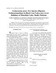 Echinostoma atrae, new species - Zoological Society Of Pakistan